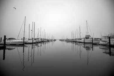 Boats Wait in the Fog