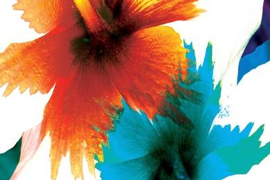 Orange Aqua [Hor]