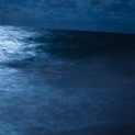 Luna Wave