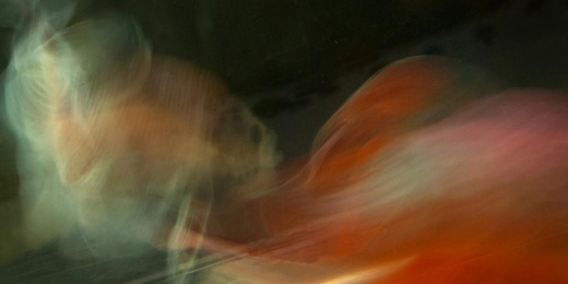 Beta Blur 1