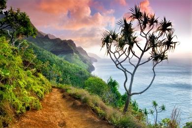 Hawaiian Trail