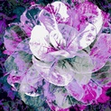 Antique Flower [Hor]
