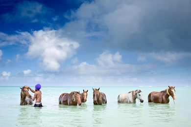 Seascape, Antigua