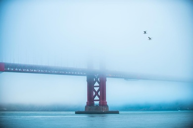 Golden Gate III