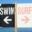 Swim or Surf - Malibu