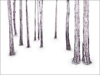 Woodland, Lavender