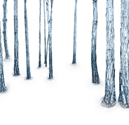 Woodland, Blue