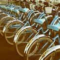 Cycle III