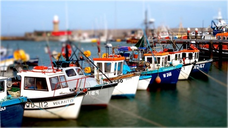 Boats Dunmore East Harbour