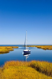 Salt Marsh Sailboat, Cape Cod