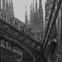Gothic in the Dark