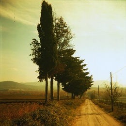 Simple Land