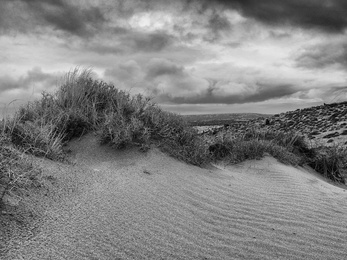 Sand Dune 1