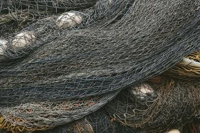Fishnet Study #12