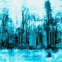 NY Blue Trees
