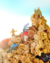 Granola Climbers