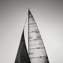 Sail Abstract X
