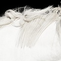 White Horse on Black 01