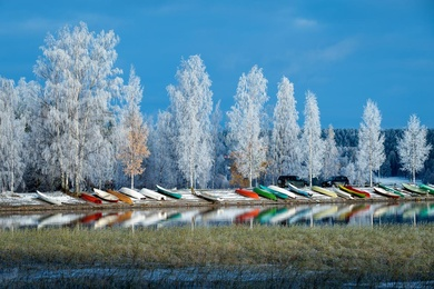 Boats and Frost