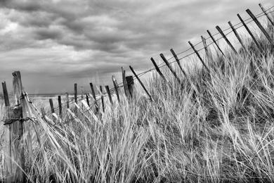 Coastal Fence