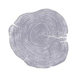 Stump 1 - Variation 21