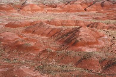 Painted Desert I