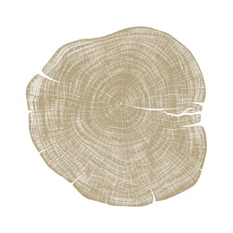 Stump 1 - Variation 33
