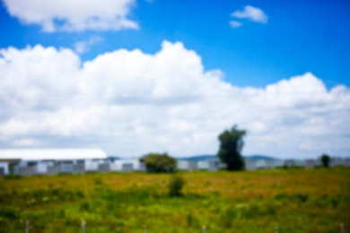 San Miguel, Field