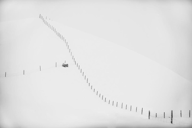 Stark Snowscape #2