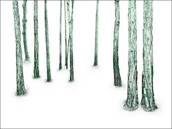Woodland, Green