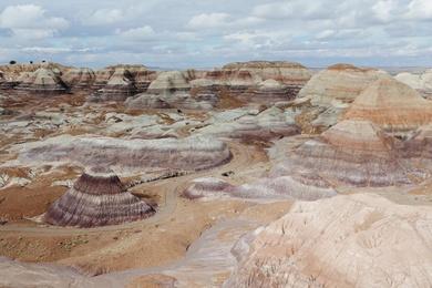 Painted Desert Study XVI