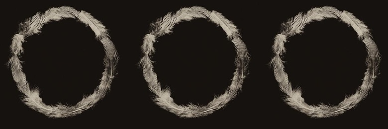 Ring of Feathers I