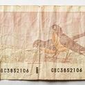 Bird Series $2