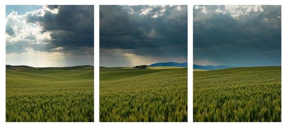 Storm Over Palouse Triptych