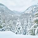 Backcountry Serenity - Whistler