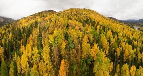 Autumn in Alaska 1