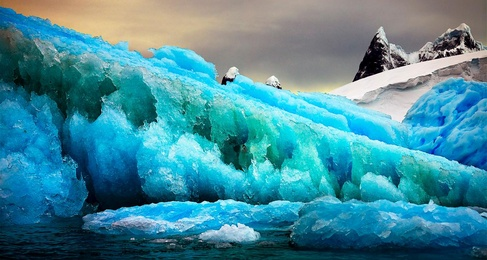 Iceberg Texture #1