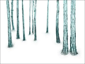 Woodland, Turquoise