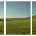 The Mountain & the Mole Hill Triptych
