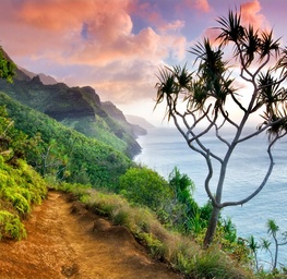 Hawaiian Trail