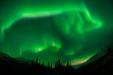 Auroras Over the Rockies 1