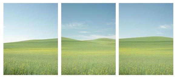 Pastel Palouse Triptych