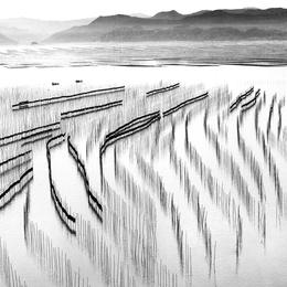 Seaweed Farm and Mountains
