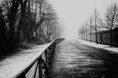 Endless Winter II