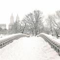 Central Park Winter - Snow on Bridge - New York City