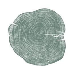 Stump 1 - Variation 7
