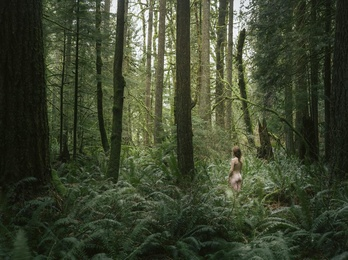 Lost in the Woods I