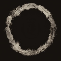 Feather Circle
