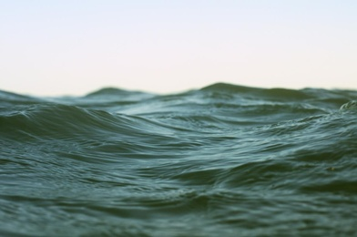 Within Waves 5