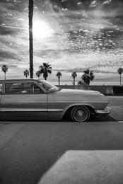 Impala California